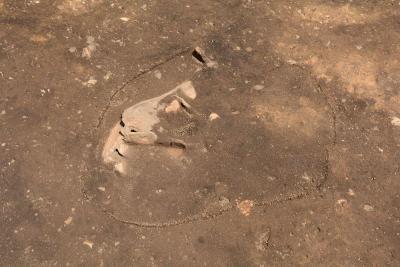 写真8 土器埋設遺構(SM110)検出.jpg